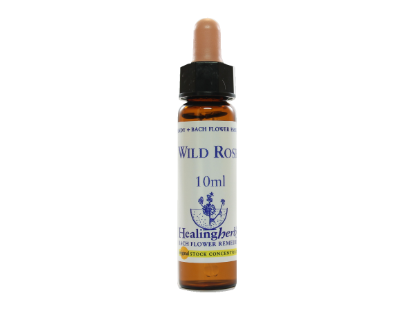 Wild Rose - Rosa canina - 10ml