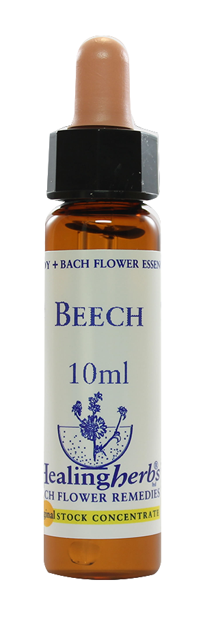 Beech - Floral De Bach Pet 10ml